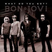 Bon Jovi, What Do You Got?, 00602527548449