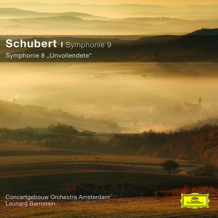Sinfonien 8,9 (CC): RCOA/Bernstein