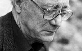 Alfred Brendel, Das Video-Interview mit Alfred Brendel zum 80. Geburtstag