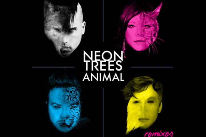 Neon Trees Animal Remixe Cover