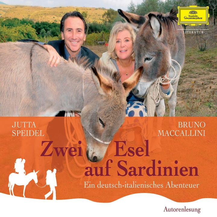 Zwei Esel auf Sardinien: Speidel, Jutta / Maccallini, Bruno