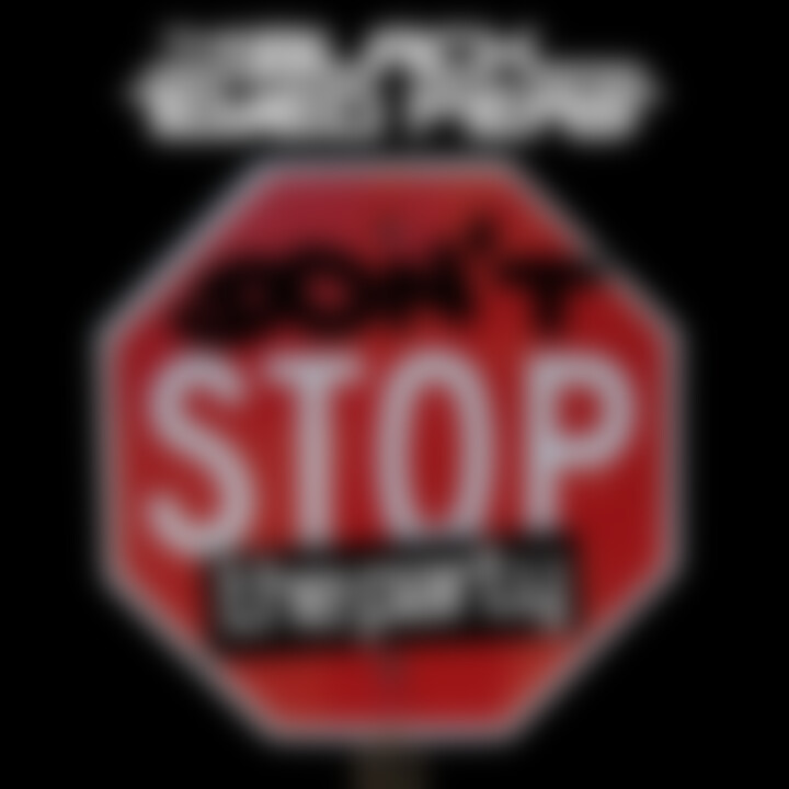 Don't stop the party Single Cover 2011