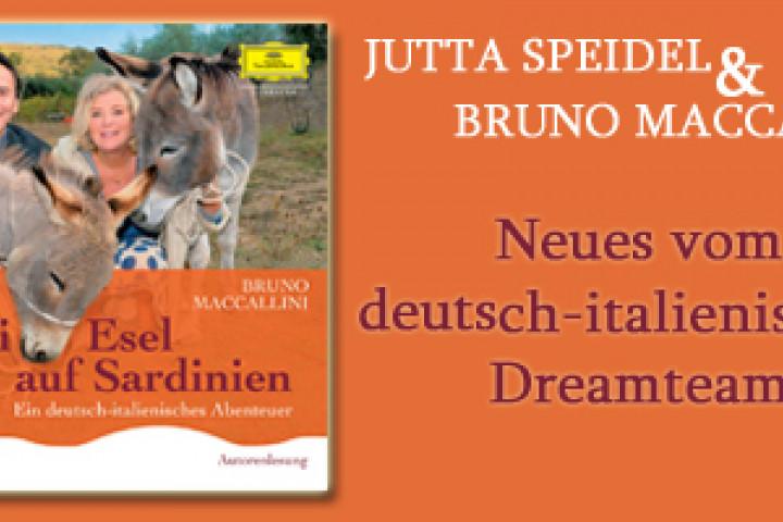 Zwei Esel auf Sardinien Eyecatcher
