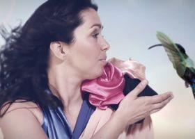 Céline Rudolph, Dokumentation zum Album Salvador von Céline Rudolph