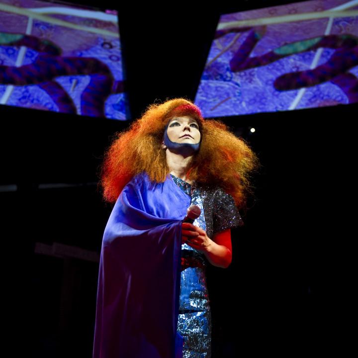 Björk Pressefoto 1/2011