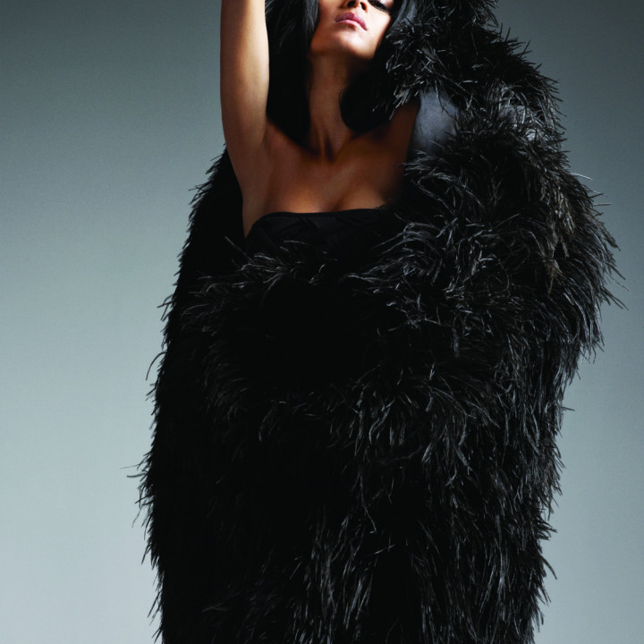 Nicole Scherzinger Pressefoto 2/2011