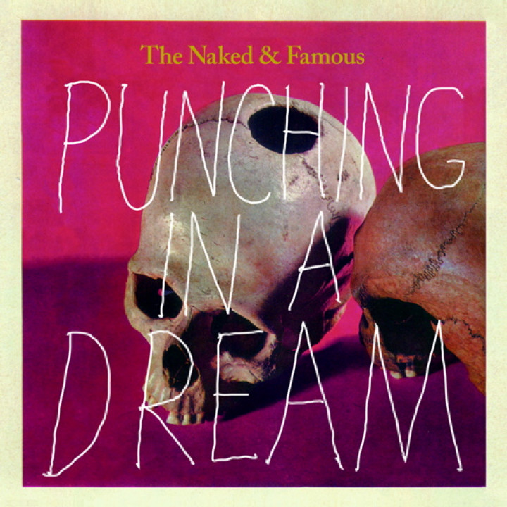 Cover Punching In A Dream