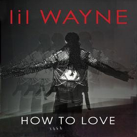 Lil Wayne, How To Love, 00000000000000