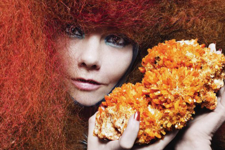 Björk 2011_02
