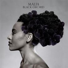 Malia, Black Orchid, 00602527860596