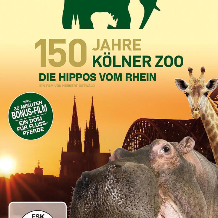150 Jahre Kölner Zoo - Die Hippos vom Rhein: Kölner Zoo