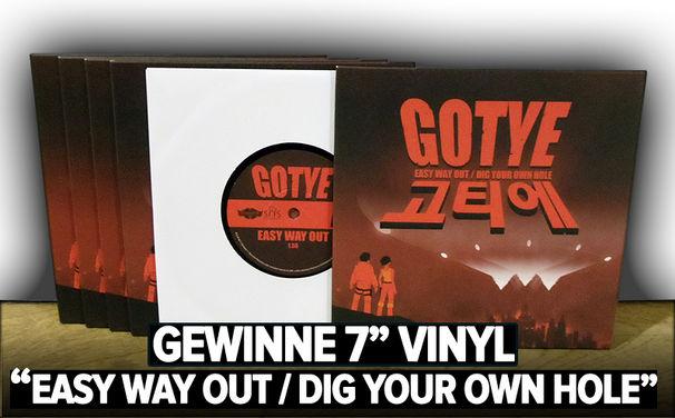 Gotye, Gewinnspiel: Ergattere hier eine Gotye Sammler-Vinyl