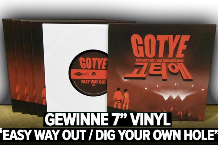 Gotye Vinyl