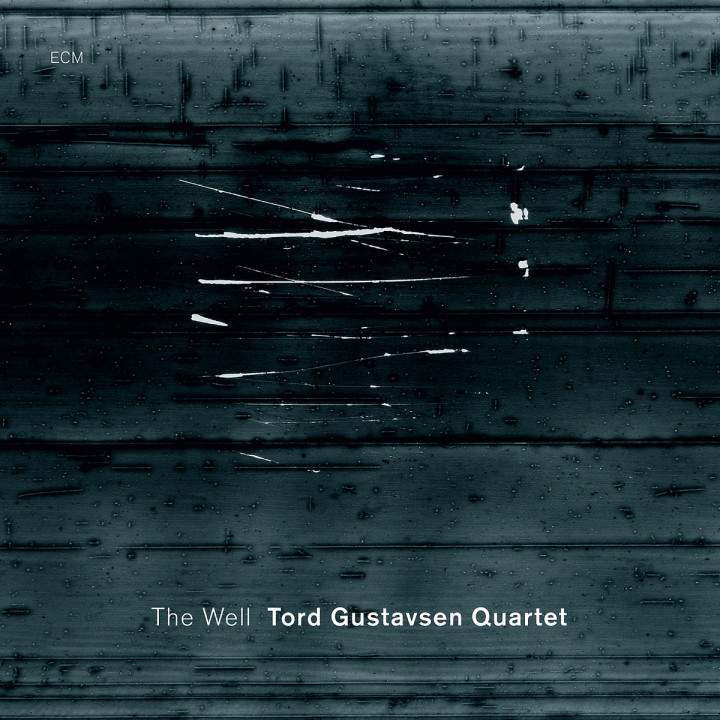 The Well: Gustavsen,Tord Quartet
