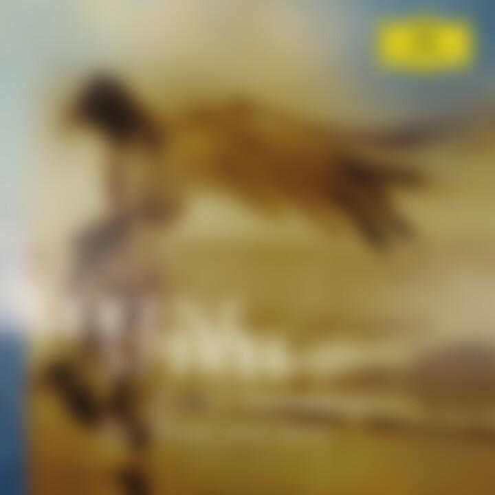 Serene Spirit: Gallois/Bartoli/Terfel/Maisky/Levine/Karajan/Bp/+