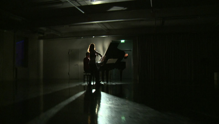 Franz Schubert: Fantasie - Dokumentation zum Album