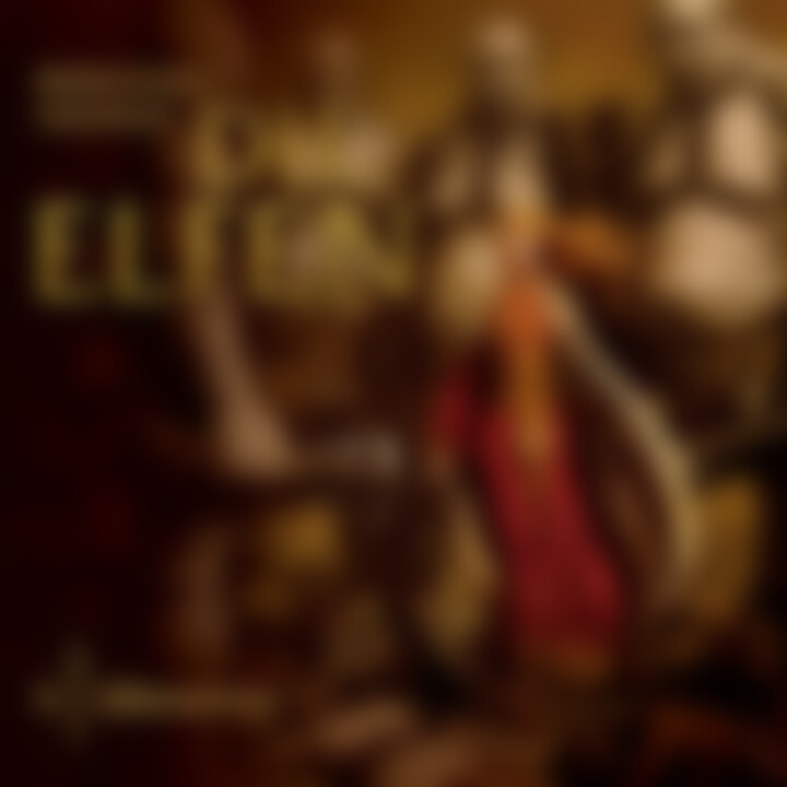 05: Elfenwinter: Die Elfen