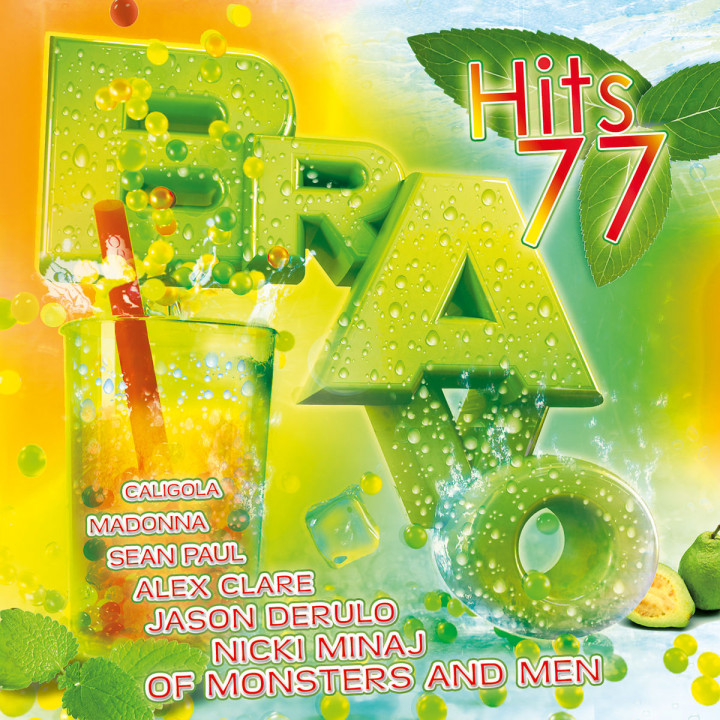 Bravo Hits Vol.77: Various Artists
