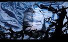 Björk, Earth Intruders