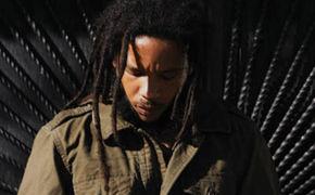 Stephen Marley, Made In Africa jetzt in zwei Versionen ansehen