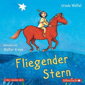 Ursula Wölfel, Fliegender Stern, 09783867422376
