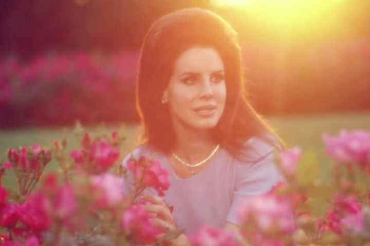 Lana del Rey The National Anthem Video