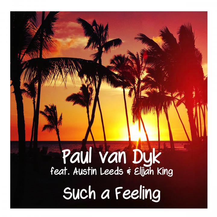 Paul van Dyk - Such A Feeling