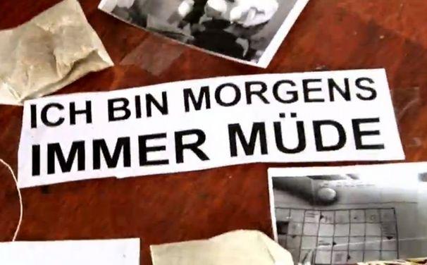 Laing, Laings Morgens immer müde im Deichkind Remix: Seht das Fan-Video