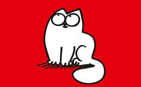Simon's Cat, Endlich! Die erste DVD von Simon's Cat ist da
