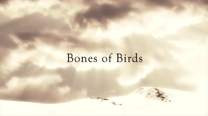 Webisode 3: Bones Of Birds