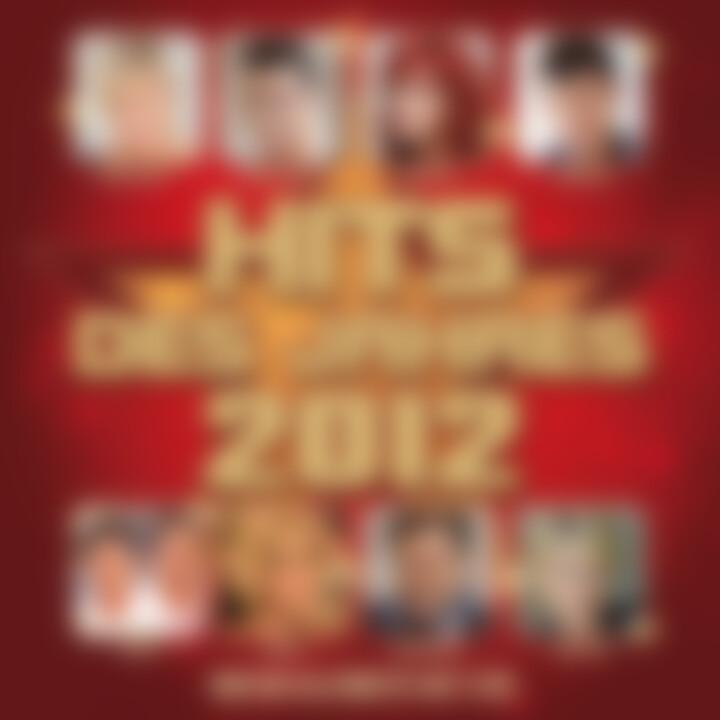 Hits des Jahres 2012