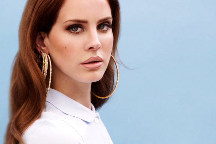 Lana del rey the paradise edition spotify