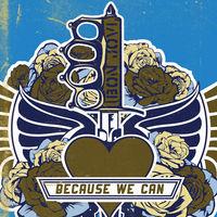 Bon Jovi, Because We Can, 00602537299225