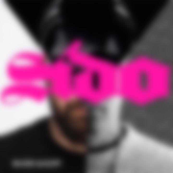 Sido Bilder im  Kopf Cover 2013
