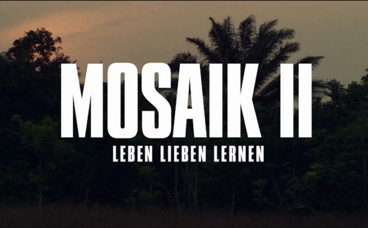 Mosaik II (Leben Lieben Lernen)