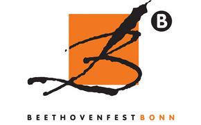 Martin Grubinger, Beethovenfest 2013 unter dem Motto Verwandlungen