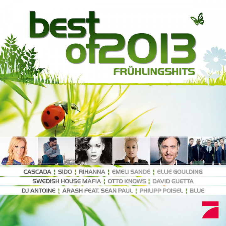 Best Of 2013 - Frühlingshits                      : Various Artists