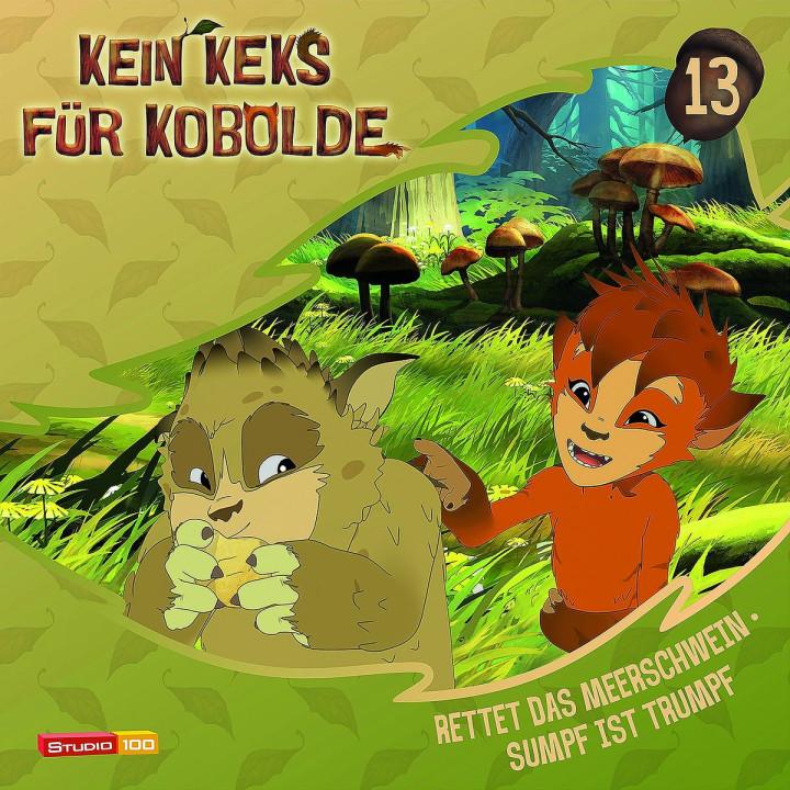 13: Rettet das Meerschwein/Sumpf ist Trumpf: Kein Keks für Kobolde (TV-Hörspiel)