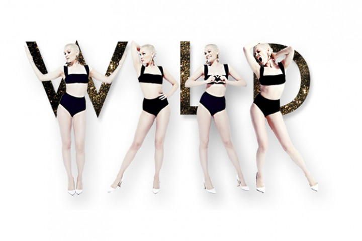 Jessie J Wild 2013