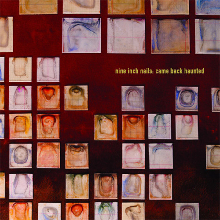 "Nine Inch Nails ""Came Back Haunted"""