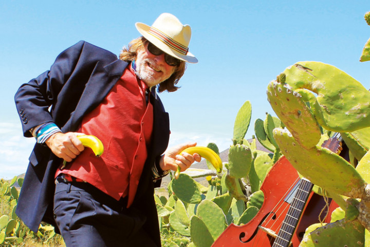 Sommer-Sonne-Kaktus-Pressefoto