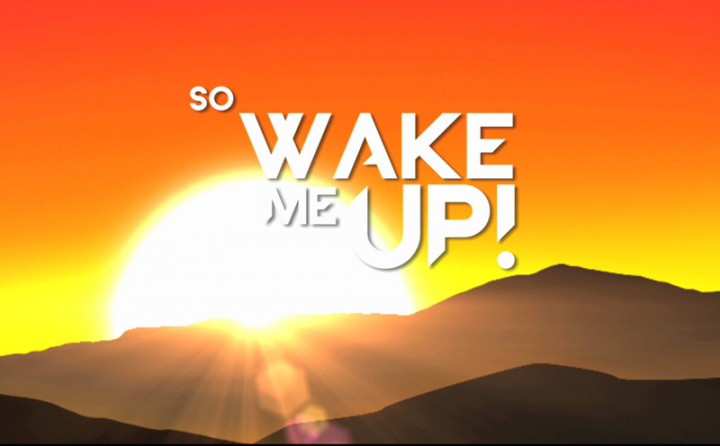 Wake Me Up Lyric Video