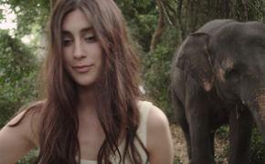 Elif, Das neue Elif Video 200 Tage Sommer feiert Premiere