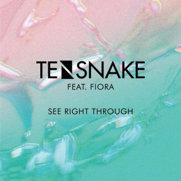 Tensnake Cover
