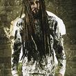 Korn, Korn 2013 2
