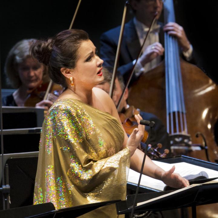 Giovanna d'Arco 2013: Anna Netrebko