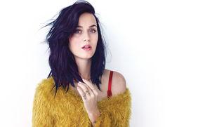 Katy Perry, Katy Perry