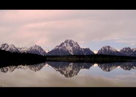 Schiller, OPUS von SCHILLER – Swan Lake