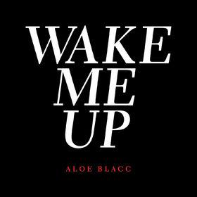 Aloe Blacc, Wake Me Up, 00602537594665