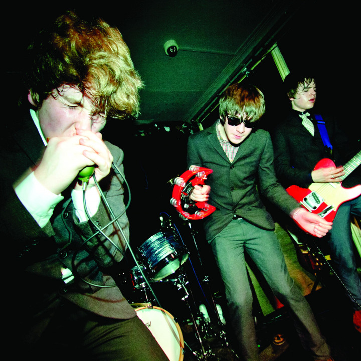 the strypes 2013 2